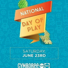 Annual National Day of Play