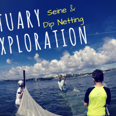 Palm Beach Gardens, FL Events For Kids: Estuary Exploration: Seine And Dip  Netting