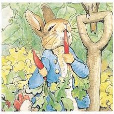 Things to do in Spring Hill, FL for Kids: Bits N Pieces Puppet Theatre presents Peter Rabbit , Spring Hill Branch Library
