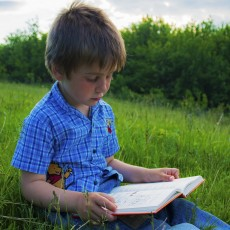 Things to do in Syracuse, NY for Kids: Reading Treasure Hunt, Beaver Lake Nature Center