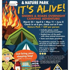 Fort Myers, FL Events for Kids: Snores & Roars Overnight Camping Adventure at the Shell Factory!
