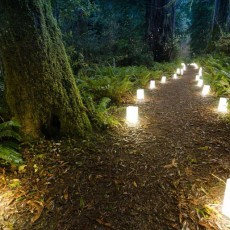 Luminary Walk | Spring Equinox {All Ages}