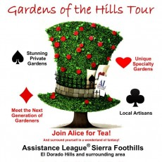 Folsom-EDH, CA Events for Kids: Join Alice for Tea in the Garden