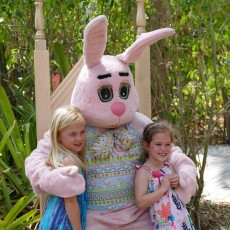 Fort Myers, FL Events for Kids: Spring Fest: Meet the Easter Bunny