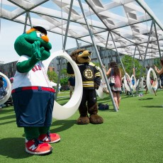 Brookline-Norwood, MA Events for Kids: Take Me Out to the Ballgame