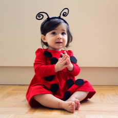 Lovely Little Lady Bug