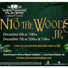 Brookline-Norwood, MA Events for Kids: Westwood Players Present Into the Woods, Jr.