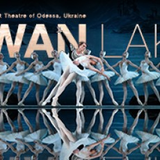 Brookline-Norwood, MA Events for Kids: Swan Lake
