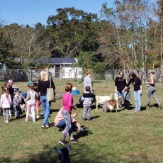 Things to do in North Shore, LA: Picnic with the Goats