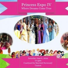 Things to do in Brookline-Norwood, MA: Princess Expo-Where Dreams Come True