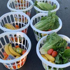 Things to do in Casa Adobes-Oro Valley, AZ for Kids: Bountiful Baskets Pick Up, Bountiful Baskets