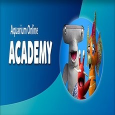 Long Beach, CA Events for Kids: Aquarium Live:  The Aquarium's Online Academy