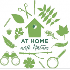 Things to do in Cincinnati, OH: At Home With Nature | Available Anytime