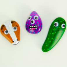 Concord, NH Events for Kids: Kids Club Online - Pet Rocks
