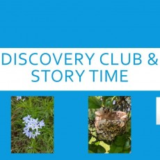 Things to do in Fort Worth Southwest, TX for Kids: Discovery Club w/FW Public Library Story Time , Fort Worth Public Library