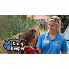 Wilmington, NC Events for Kids: Virtual Kamp Keeper