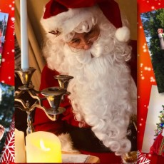Wesley Chapel-Lutz, FL Events for Kids: Christmas in July - Free Virtual Story Time
