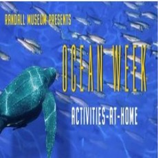 Things to do in San Antonio Northwest, TX: Ocean Party Online with Randall Museum!