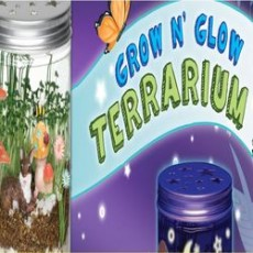 Charleston, SC Events for Kids: Kids Club Online: How to Construct and Plant a Terrarium
