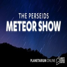 Charleston, SC Events for Kids: The Perseids Meteor Show
