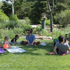 Family Yogatime in the Gardens