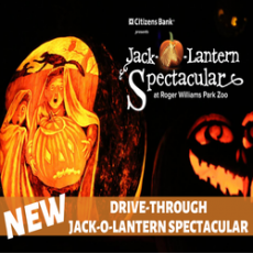 Things to do in Worcester, MA: Drive Through Jack-O-Lantern Spectacular