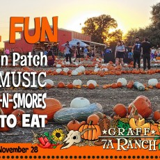 Things to do in San Antonio Northwest, TX for Kids: Fall Farm Fun, Graff 7A Ranch