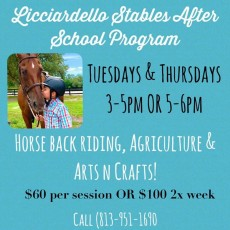 Wesley Chapel-Lutz, FL Events: L Stables After School Program