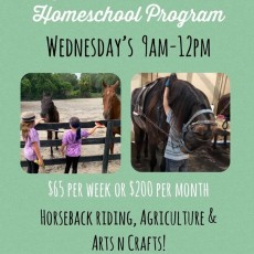 Wesley Chapel-Lutz, FL Events: L Stables Homeschool Day