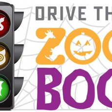 Things to do in San Antonio Northwest, TX: Drive Thru Zoo Boo