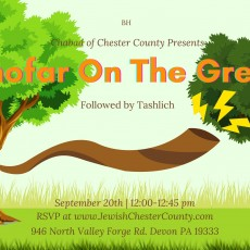 Things to do in Main Line, Pa for Kids: Shofar On The Green, Chabad of Chester County