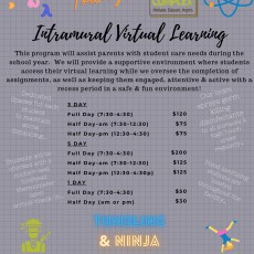 Things to do in Deptford-Monroe Township, NJ for Kids: Intramural Virtual Learning, Rastelli Kids Complex