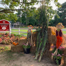 Southern Monmouth, NJ Events: Harvest Festival