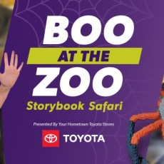 Things to do in Lakewood, CO for Kids: Boo at the Zoo, Denver Zoo