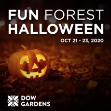 Halloween Events Midland Michigan 2020 A Fun Forest Halloween   Hulafrog Midland, MI