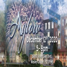 Things to do in Wesley Chapel-Lutz, FL: Avalon Aglow at Avalon Park