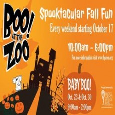Worcester, MA Events for Kids: Boo at the Zoo