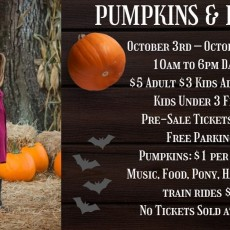 Things to do in Orlando, FL for Kids: Pumpkin & Ponies Festival 2020, Painted Oaks Academy