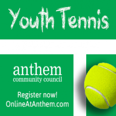 Tennis Lessons - All Skill Levels