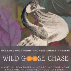 Wild Goose Chase Virtual Scavenger Hunt
