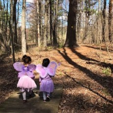 Things to do in Mansfield-Attleboro, MA for Kids: Fairy Fun at the Park, Francis William Bird Park