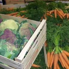 Howell Farmers Market - Harvest Edtion
