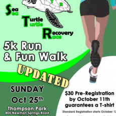 Things to do in Southern Monmouth, NJ: Sea Turtle Recovery Run/Walk