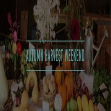 Worcester, MA Events for Kids: Autumn Harvest Weekend