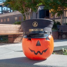 Things to do in Laurel-Columbia, MD for Kids: Halloween Toddler Time at the B&O, B&O Railroad Museum