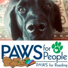Things to do in Hulafrog at Home: Virtual PAWS for Reading