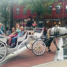 Things to do in Warwick, RI for Kids: Private Carriage Rides in Wickford, I Love Wickford Village