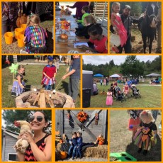 Things to do in Charleston, SC for Kids: 5th Annual Spooktacular Halloween event w/ games and candy, Crosswind Farm- Animal Rescue, Event & Party Venue