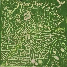 Corn Maze and Pumpkin Patch
