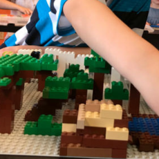 Red Bank, NJ Events: Minecraft® Makers